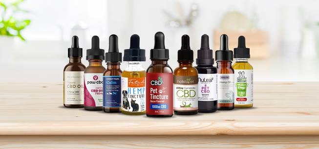 7 Suggestions From A Cbd Oil For Canines Amazon.com Professional